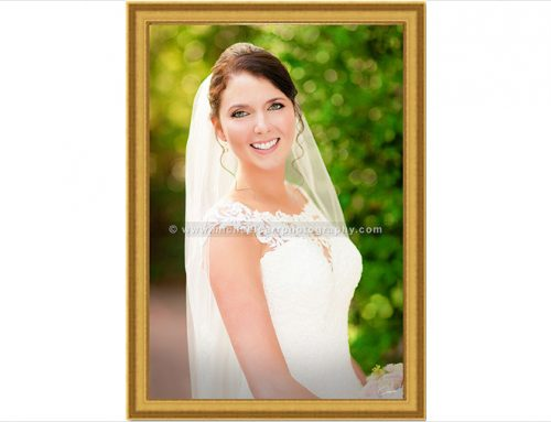 Houston Bridal Portrait