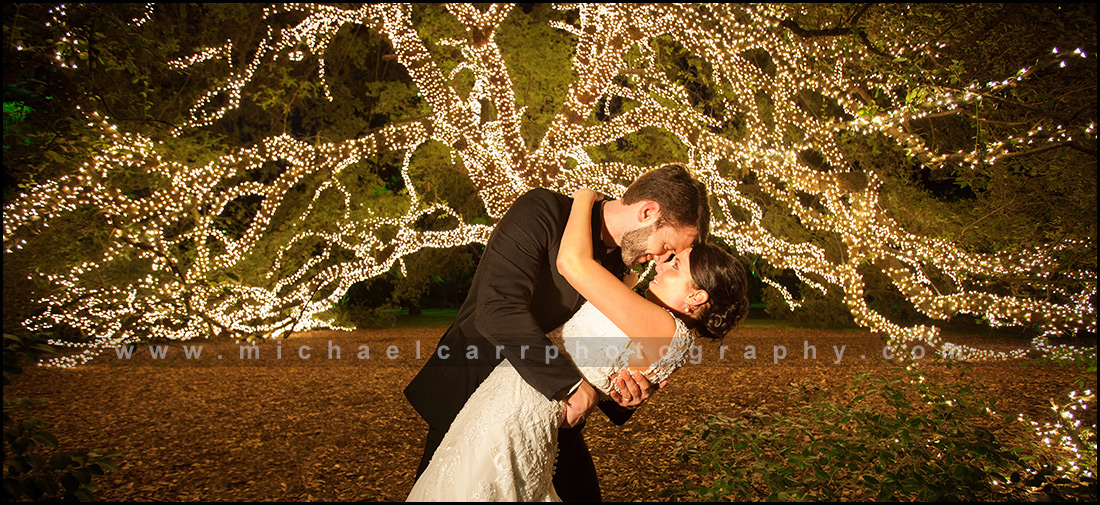 Wedding photographers in Houston